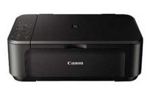 Canon PIXMA MG2220 - multifunction printer